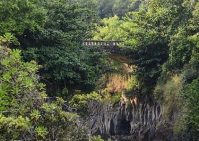 bridge-views-road-to-hana