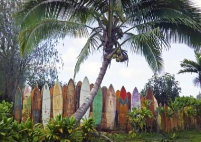 surfboard fence hana