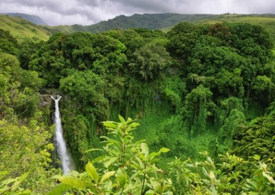 waterfal-vistas-hana